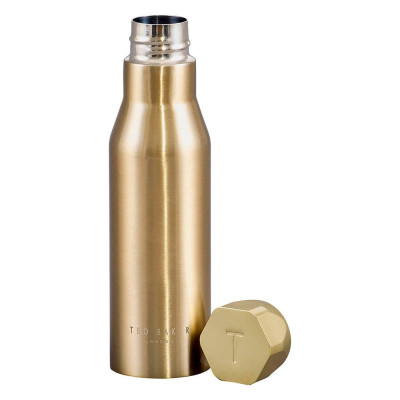 1605809128327wild-and-wolf-ted-baker-ted535-gold-water-bottle-2.jpg